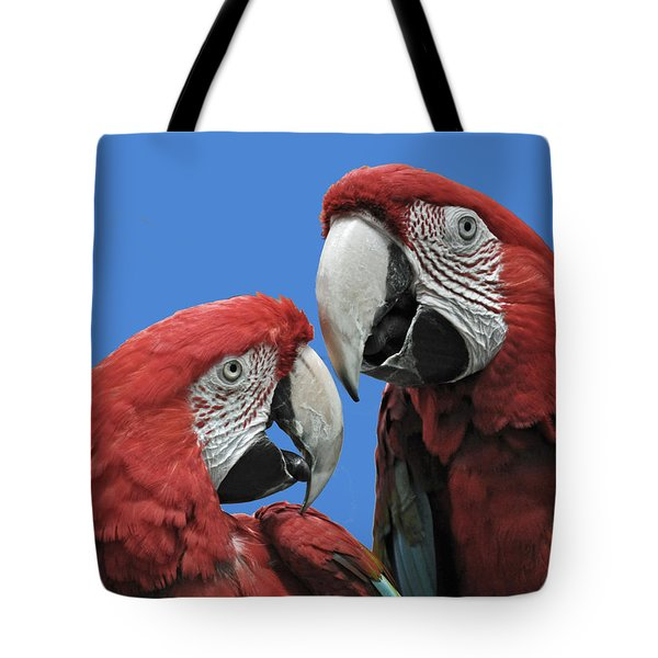Tote Bag featuring the photograph I Told You So by Rodney Campbell