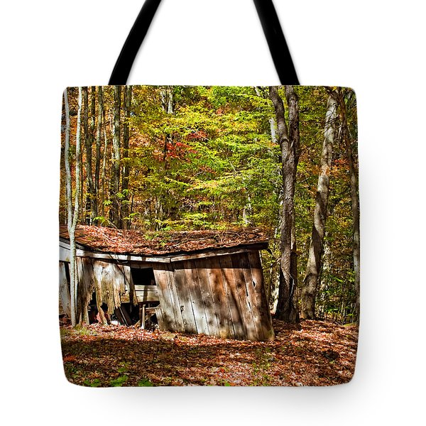 In Autumn Woods Tote Bag by Steve Harrington
