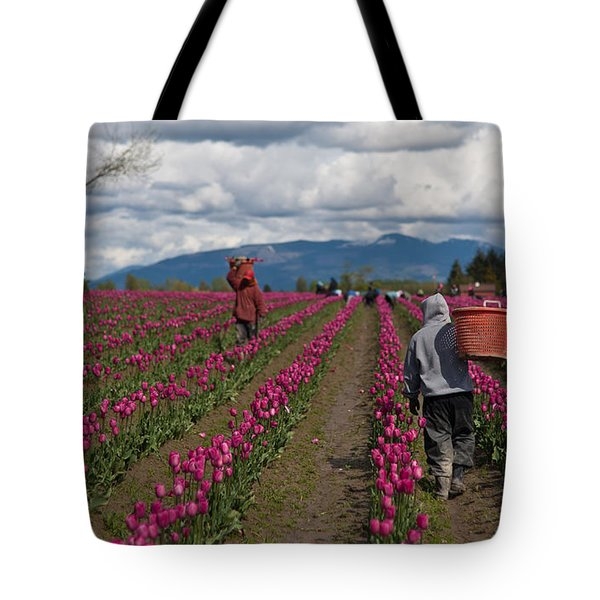 In The Tulip Fields Tote Bag by Mike Reid