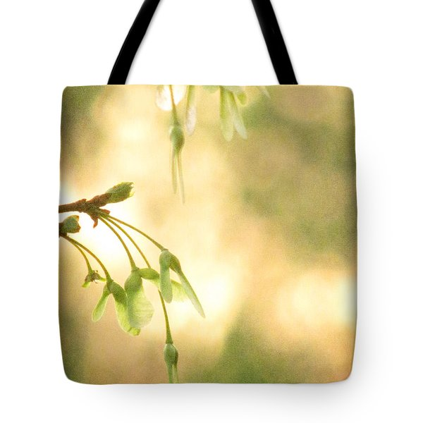 Interlude Tote Bag by Amy Tyler