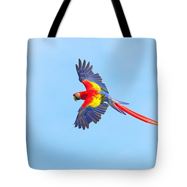 Into The Blue Tote Bag by Tony Beck