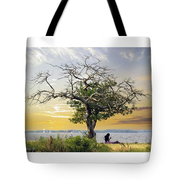 Introspective Tote Bag by Brian Wallace