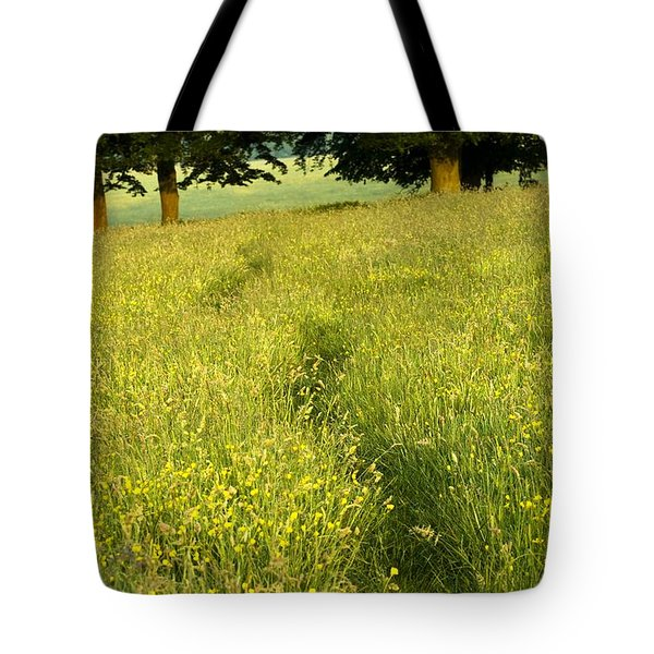 Ireland Trail Through Buttercup Meadow Tote Bag by Peter McCabe
