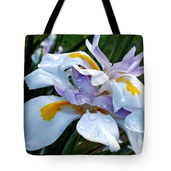 Iris enjoying the Sunshine Tote Bag by Kaye Menner