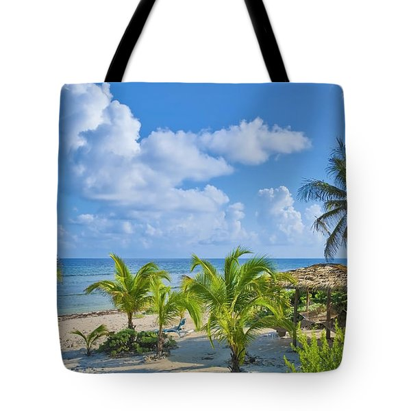 Island Beauty Tote Bag by Stephen Anderson