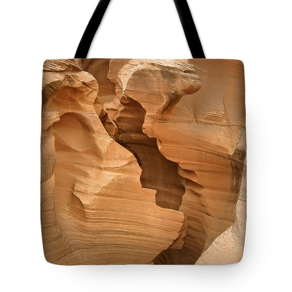 It Started With A Kiss Tote Bag by Christine Till