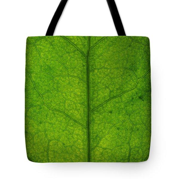 Ivy Leaf Tote Bag by Steve Gadomski