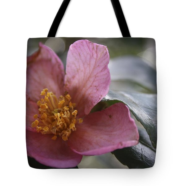 January Camelia 2 Tote Bag by Teresa Mucha