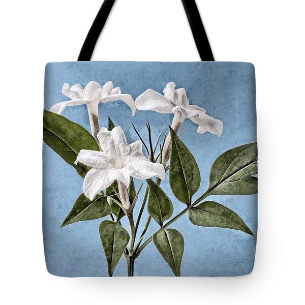 Jasminum officinale Tote Bag by John Edwards