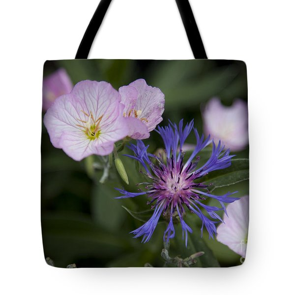 Joined Tote Bag by Amanda Barcon