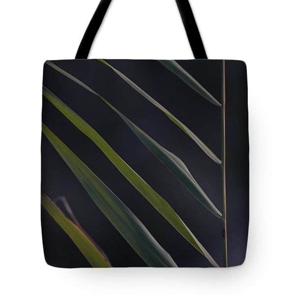 Just Grass Tote Bag by Heiko Koehrer-Wagner