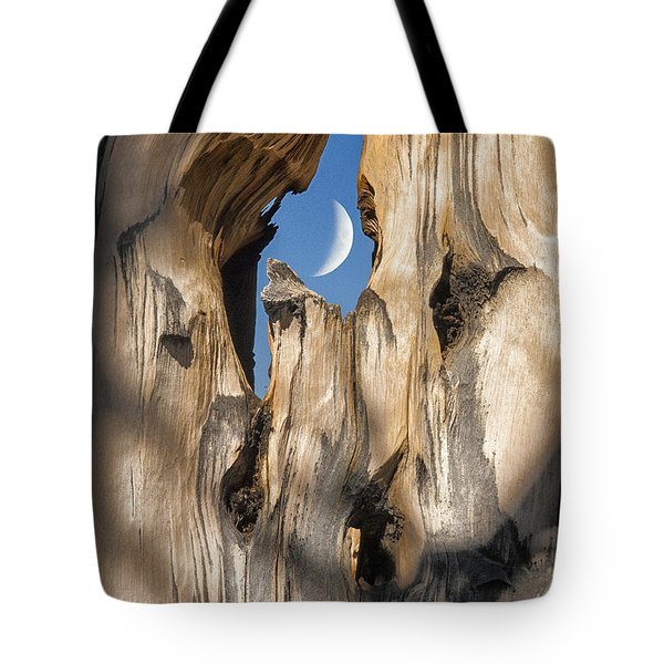 Just Passing By Tote Bag by Sandra Bronstein
