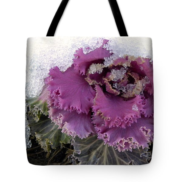 Kale Plant In Snow Tote Bag by Sandi OReilly