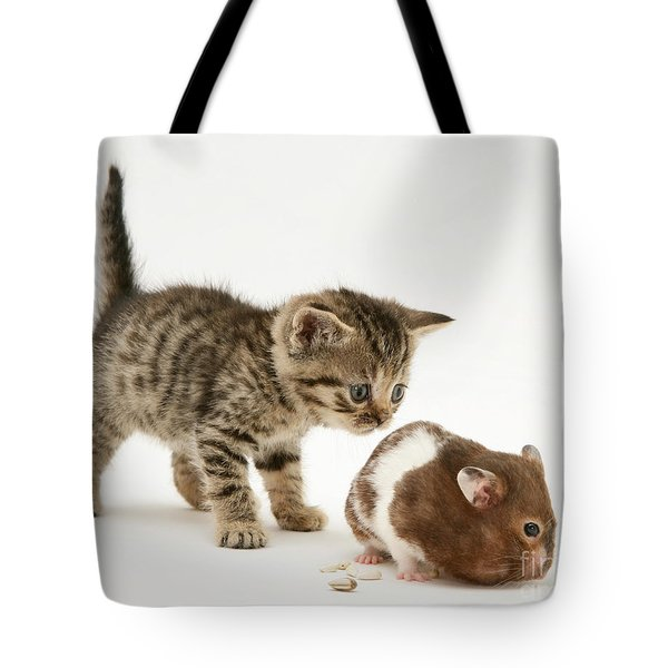 Kitten And Hamster Tote Bag by Jane Burton