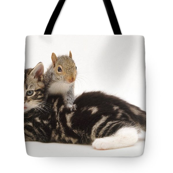 Kitten And Squirrel Tote Bag by Jane Burton