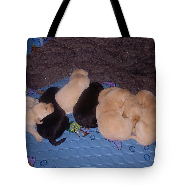 Lab Pups 3 Tote Bag by Aimee L Maher Photography and Art Visit ALMGallerydotcom