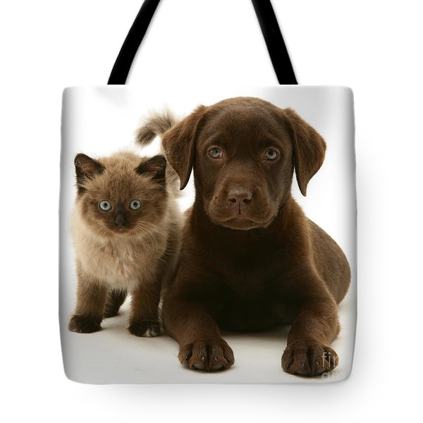 Labrador Pup And Birman-cross Kitten Tote Bag by Jane Burton