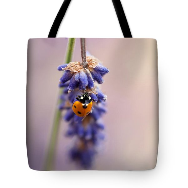 Ladybird And Lavender Tote Bag by John Edwards