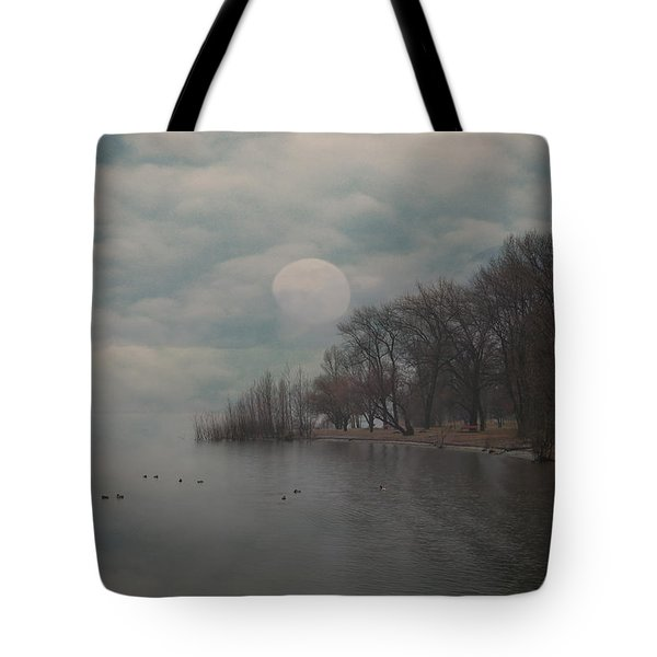 landscape of dreams Tote Bag by Joana Kruse