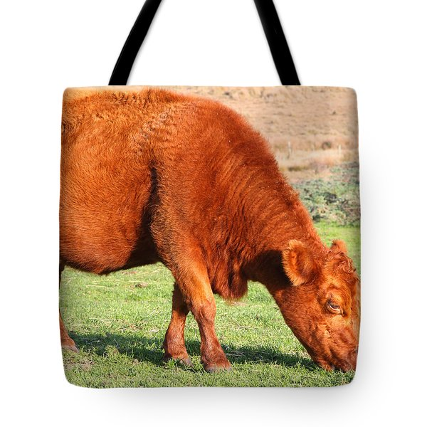 Landscape With Cow Grazing In The Field . 7D9926 Tote Bag by Wingsdomain Art and Photography