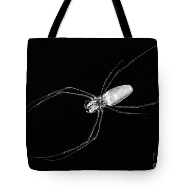 Large Spider X-ray Tote Bag by Ted Kinsman