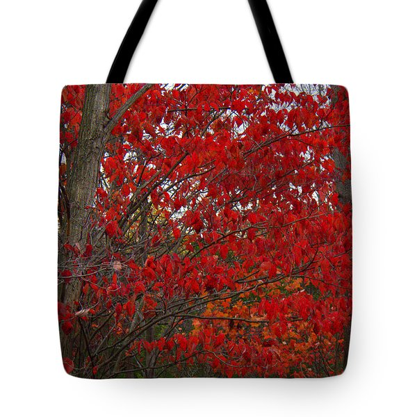 Last Gasp Tote Bag by Ed Smith