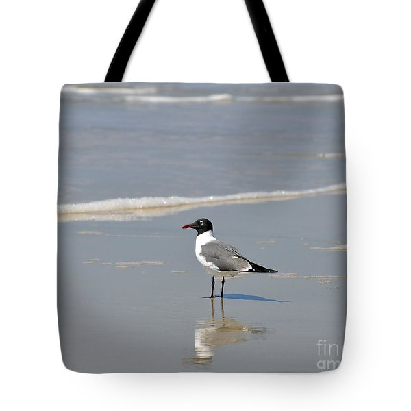 Laughing Gull Reflecting Tote Bag by Al Powell Photography USA