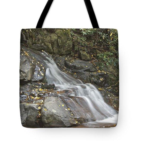 Laurel Falls 6230 Tote Bag by Michael Peychich