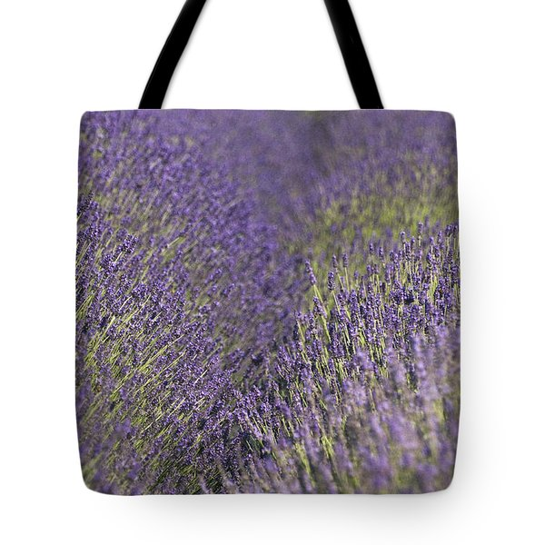 Lavender Fields Heart Tote Bag by Anahi DeCanio