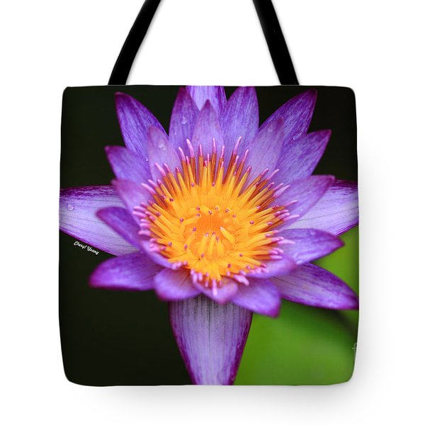 Lavender Waterlily Tote Bag by Cheryl Young
