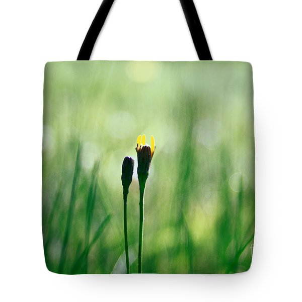 Le Centre De L Attention - Green S0101 Tote Bag by Variance Collections