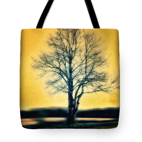 Leafless Tree Tote Bag by Jutta Maria Pusl