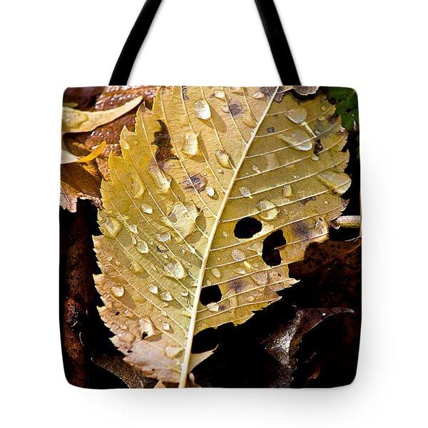 Leafy Tears Tote Bag by Burney Lieberman