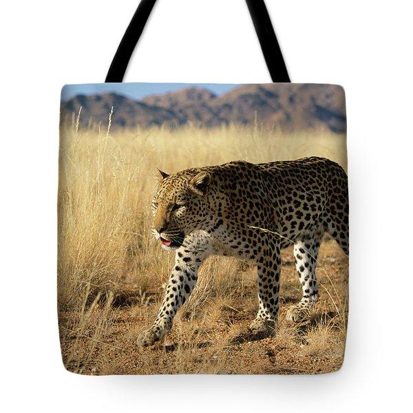 Leopard Panthera Pardus Walking, Africa Tote Bag by Winfried Wisniewski