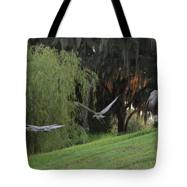 Lesson A Success Tote Bag by Carol Groenen