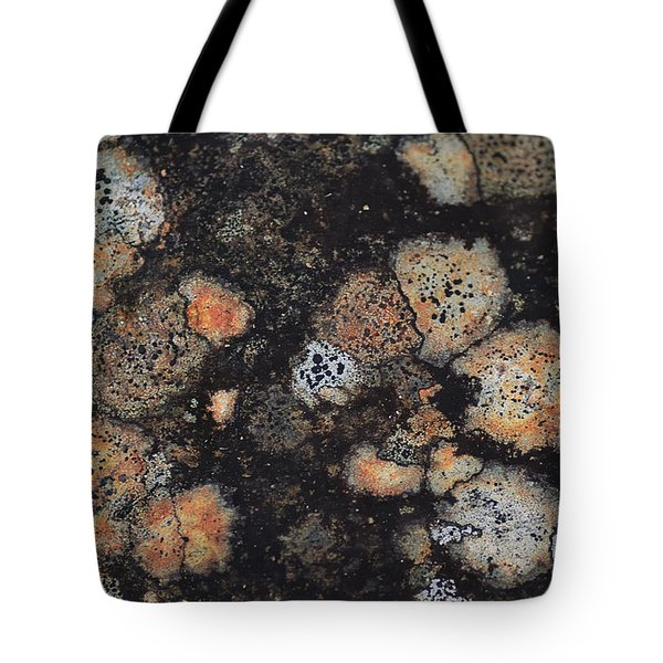 Lichen Abstract Tote Bag by Susan Capuano