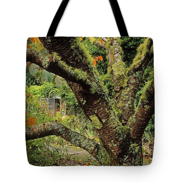 Lichen Covered Apple Tree, Walled Tote Bag by The Irish Image Collection