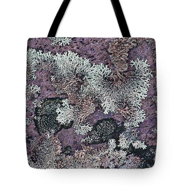 Lichen Pattern Series - 57 Tote Bag by Heiko Koehrer-Wagner