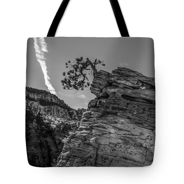 Life On The Edge Tote Bag by George Buxbaum
