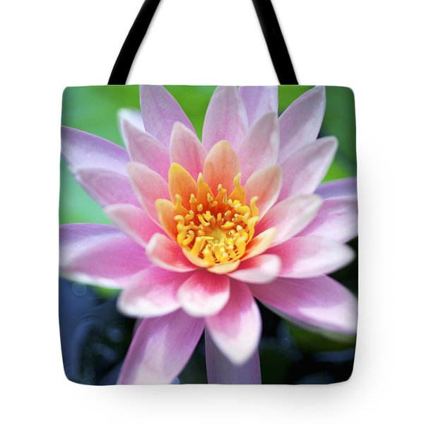 Light Pink Water Lily Tote Bag by Kicka Witte