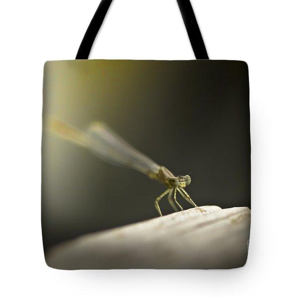 Like An Angel Tote Bag by Kim Henderson