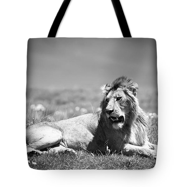 Lion King In Black And White Tote Bag by Sebastian Musial