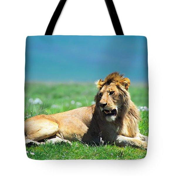 Lion King Tote Bag by Sebastian Musial