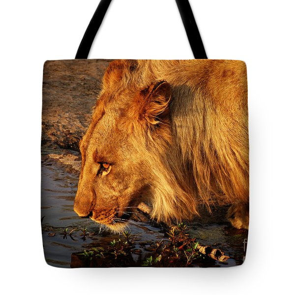 Lion's Pride Tote Bag by Andrew Paranavitana