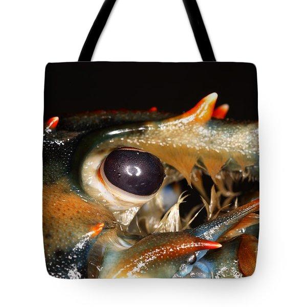 Lobster Eye Tote Bag by Ted Kinsman