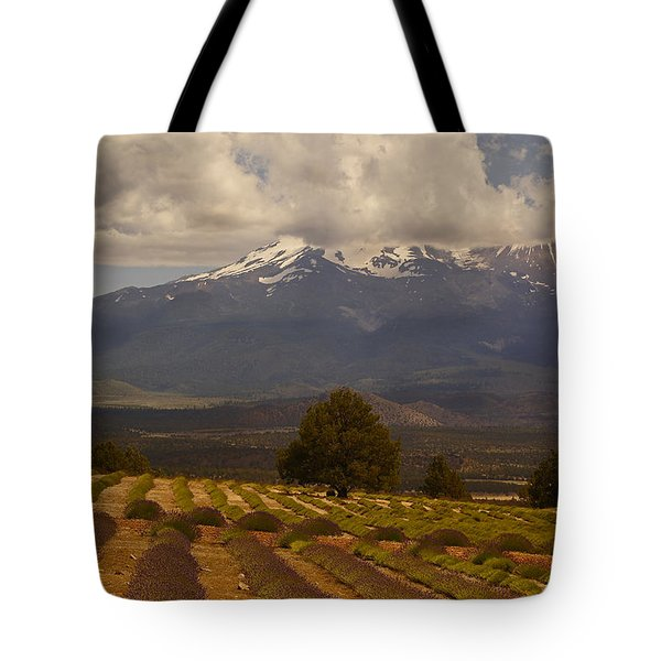 Lone Tree And Lavender Fields Tote Bag by Mick Anderson