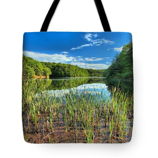 Long Branch Lake Marsh Tote Bag by Adam Jewell