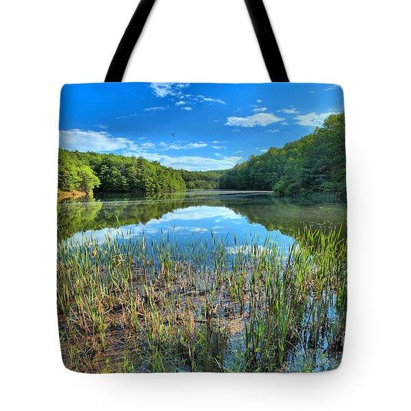 Long Branch Marsh Tote Bag by Adam Jewell