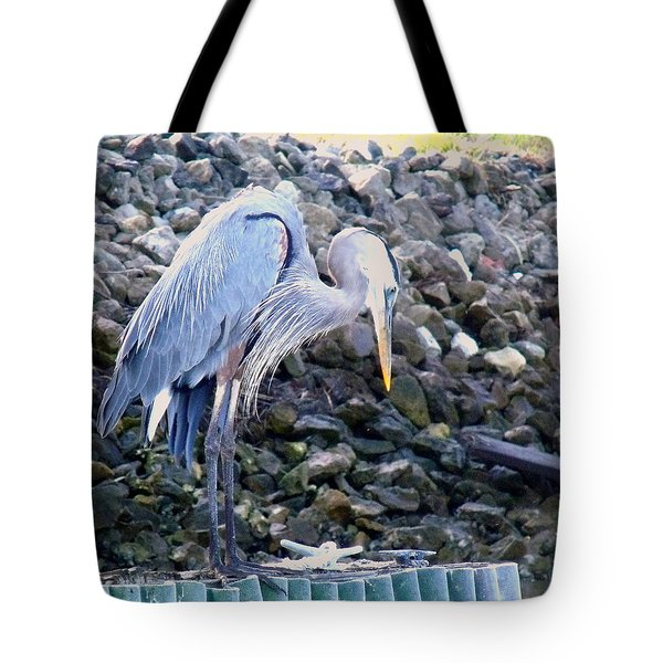 Looking For Lunch Tote Bag by Marilyn Holkham