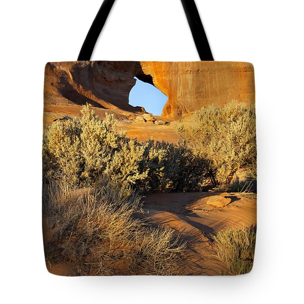 Looking Glass Tote Bag by Mike McGlothlen